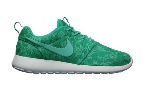 nike-roshe-run-graphic-1