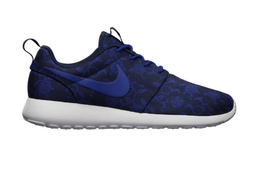 nike-roshe-run-graphic-2